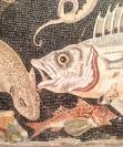 Pompeii mosaic detail
